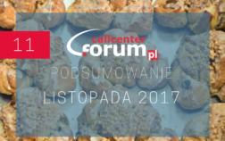 podsumowanie_LISTOPADA_2017